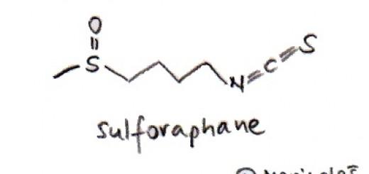 F_Sulforafan_E